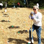 Lincoln Park conservancy tree care corps